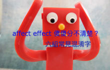 affect / effect、principle / principal …的区别